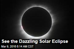 See the Dazzling Solar Eclipse