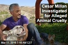 Cesar Millan Investigated for Alleged Animal Cruelty