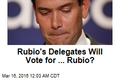 Rubio's Delegates Will Vote for ... Rubio?