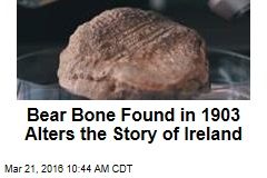 Bear Bone Shows Humans in Ireland 2.5K Years Earlier
