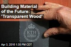 Building Material of the Future: 'Transparent Wood'