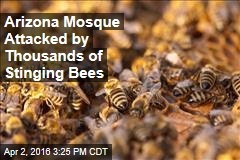 Arizona Mosque Attacked by Thousands of Stinging Bees