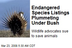 Endangered Species Listings Plummeting Under Bush