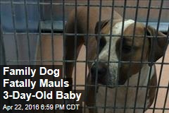 Family Dog Fatally Mauls 3-Day-Old Baby