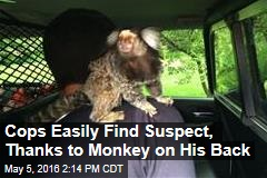 Cops Easily Find Suspect, Thanks to Monkey on His Back