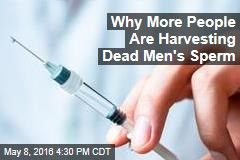 Why More People Are Harvesting Dead Men's Sperm