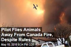 Pilot Flies Animals Away From Canada Fire, Despite Rules