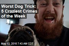 Worst Dog Trick: 5 Craziest Crimes of the Week