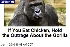 If You Eat Chicken, Hold the Outrage About the Gorilla