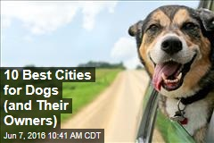 10 Best Cities for Dogs (and Their Owners)