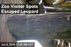Zoo Visitor Spots Escaped Leopard