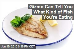 Gizmo Can Tell You What Kind of Fish You're Eating