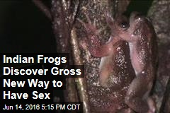 Indian Frogs Discover Gross New Way to Have Sex