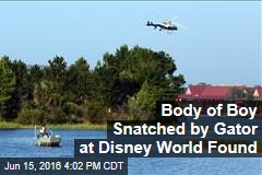 Body of Boy Snatched by Gator at Disney World Found