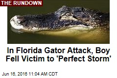 In Florida Gator Attack, Boy Fell Victim to 'Perfect Storm'
