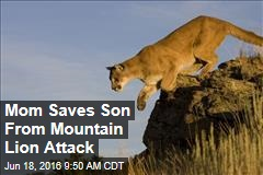 Mom Saves Son From Mountain Lion Attack