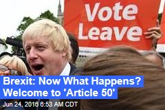 Brexit: Now What Happens? Welcome to 'Article 50'