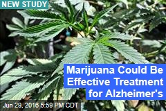 Marijuana Could Be Effective Treatment for Alzheimer's