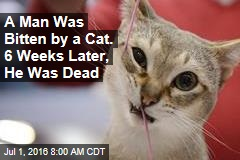 A Man Was Bitten by a Cat. 6 Weeks Later, He Was Dead