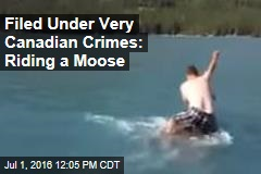 Filed Under Very Canadian Crimes: Riding a Moose