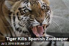 Tiger Kills Spanish Zookeeper