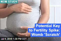 Potential Key to Fertility Spike: Womb 'Scratch'