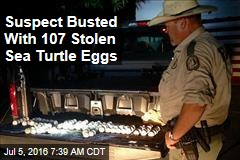 Suspect Busted With 107 Stolen Sea Turtle Eggs