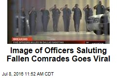 Image of Officers Saluting Fallen Comrades Goes Viral