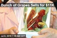 Bunch of Grapes Sells for $11K