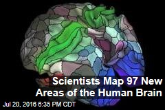 Scientists Map 97 New Areas of the Human Brain