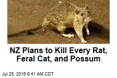 NZ Plans to Kill Every Rat, Feral Cat, and Possum