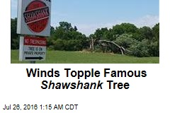Winds Topple Famous Shawshank Tree