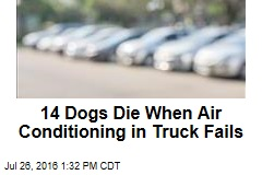 14 Dogs Die When Air Conditioning in Truck Fails