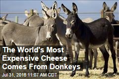The World's Most Expensive Cheese Comes From Donkeys