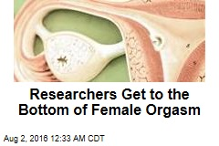 Researchers Get to the Bottom of Female Orgasm
