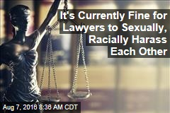 It's Currently Fine for Lawyers to Sexually, Racially Harass Each Other