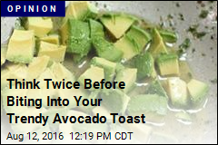 Think Twice Before Biting Into Your Trendy Avocado Toast