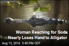 Alligator Nearly Bites Off Florida Woman's Hand