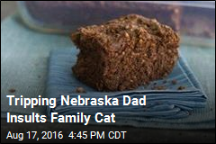 Tripping Nebraska Dad Insults Family Cat
