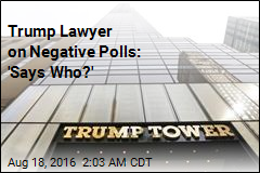 Trump Lawyer on Negative Polls: 'Says Who?'