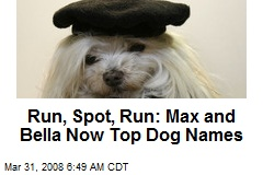 Run, Spot, Run: Max and Bella Now Top Dog Names