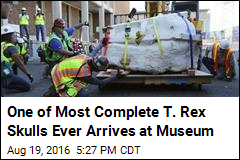One of Most Complete T. Rex Skulls Ever Arrives at Museum