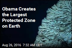 Obama Puts Record-Size Area Off Hawaii Under Protection