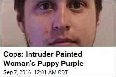 Cops: Intruder Painted Woman's Puppy Purple