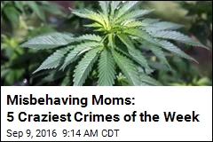 Misbehaving Moms: 5 Craziest Crimes of the Week
