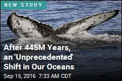 After 445M Years, an 'Unprecedented' Shift in Our Oceans