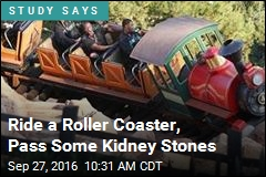 Ride a Roller Coaster, Pass Some Kidney Stones