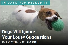 Dogs Will Ignore Your Lousy Suggestions