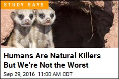 Humans Are Natural Killers But We're Not the Worst