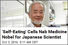 'Self-Eating' Cells Nab Medicine Nobel for Japanese Scientist